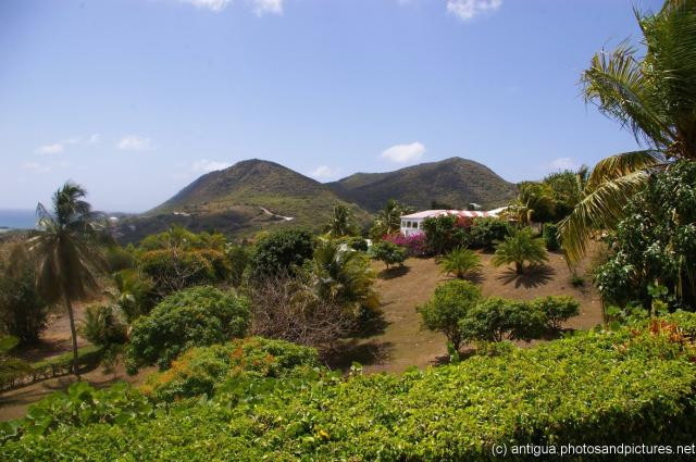 Lush plants and white house and hills and the ocean of Antigua.jpg