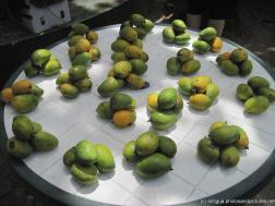 Mangos at a fruit stand in Antigua.jpg