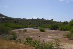 Swampy area in Antigua.jpg