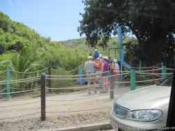 Tourists awaiting their turn on the Antigua zip line tree dive.jpg