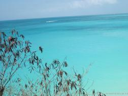 Turquoise clear waters of Antigua.jpg